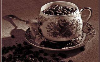 Бесплатные фото блюдце,чашка,рисунок,узор,ложечка,кофе,зерна