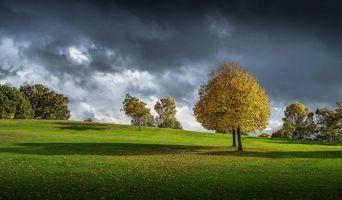 Бесплатные фото холмы,осень,деревья,поле,тучи,пейзаж