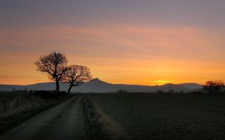 Бесплатные фото загородная дорога,поле,деревья,закат,горы