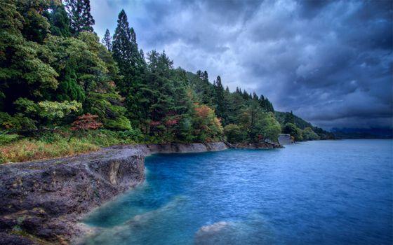 Фото бесплатно берег моря, скала, деревья