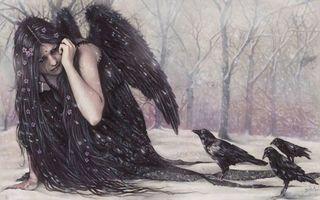 Фото бесплатно девочка, волосы, крылья, платье, черные, вороны, деревья