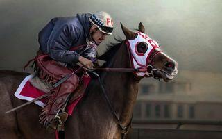 Фото бесплатно скачки, конь, лошадь, жокей, шлем, куртка, штаны
