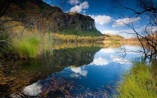 Бесплатные фото берег,трава,кустарник,озеро,отражение,горы,небо