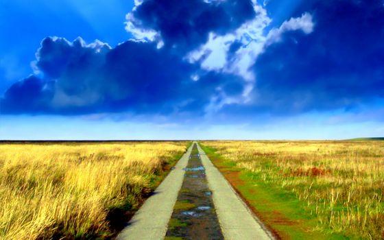 Фото бесплатно дорога, лужи, поле