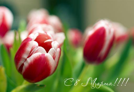 Фото бесплатно с праздником, с 8 марта, международный