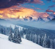 Бесплатные фото закат,зима,снег,деревья,сугробы,пейзаж
