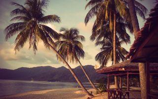 Фото бесплатно тропики, горы, пальмы, пляж, люди, бунгало, море, яхта