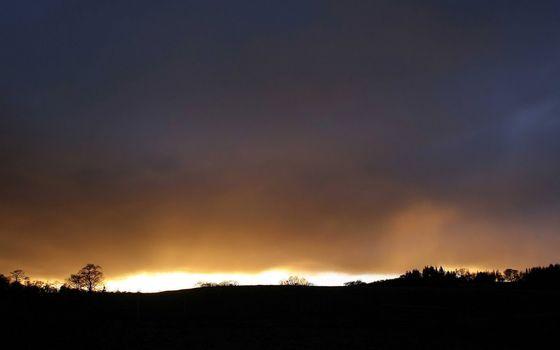Фото бесплатно деревья, вечер, закат