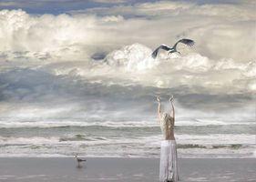 Фото бесплатно девушка, аист, волны
