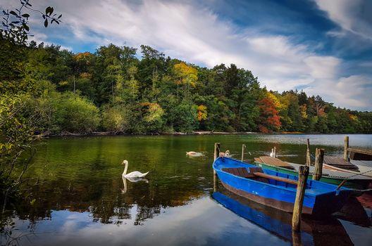 Фото бесплатно река, осень, лодки
