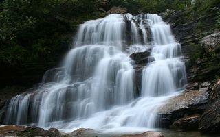 Фото бесплатно растительность, камни, река