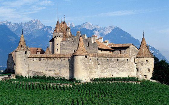 Бесплатные фото замок,крепость,стены,башни,виноградник,горы
