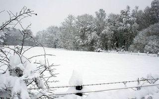 Фото бесплатно зима, снег, сугробы, деревья, кустарник, ограждение, колючая проволока