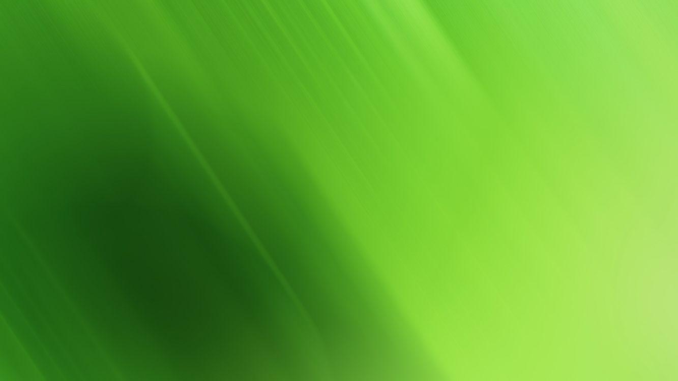 Фото бесплатно заставка, зеленая, оттенки - на рабочий стол