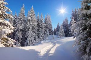 Заставки зима, тропа, снег