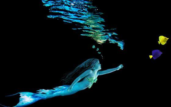 Бесплатные фото девочка,русалка,хвост,пузырьки,рыбки,цветные