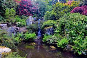 Бесплатные фото The Kubota Garden Seattle, Washington, Сиэтл, Вашингтон, сад, водоём, водопад