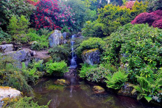 The Kubota Garden Seattle, Washington, Сиэтл, Вашингтон, сад