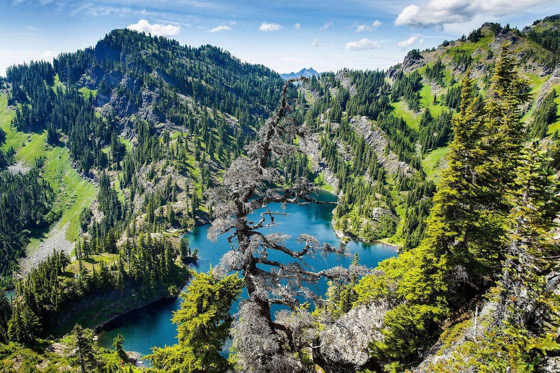Фото бесплатно озеро, горы, деревья, пейзаж, пейзажи