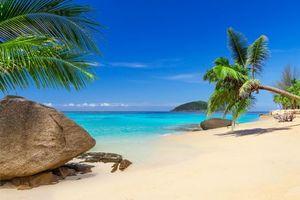 Заставки остров, море, океан, берег, пляж, пальмы, пейзаж