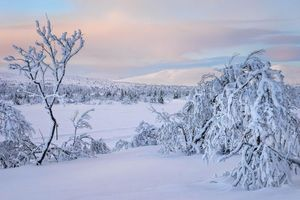 Фото бесплатно закат, зима, снег