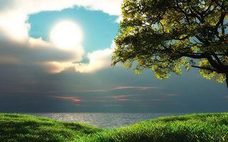 Бесплатные фото берег,трава,дерево,море,горизонт,небо,облака