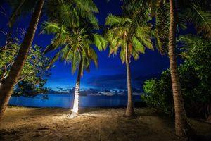 Бесплатные фото море,пляж,берег,пальмы,пейзаж