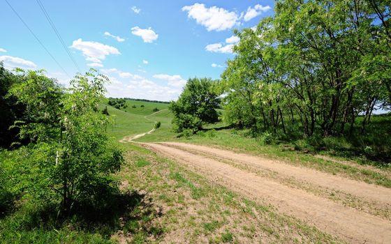 Фото бесплатно дорога полевая, трава, кустарник