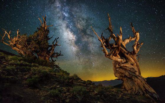 Заставки ночь,небо,галактика млечный путь,космические пейзажи с земли