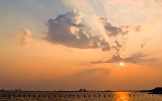 Фото бесплатно море, сваи, мост