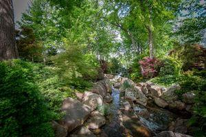 Заставки парк, ручей, лес