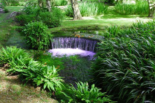Бесплатные фото Сад Нинфа,Ninfa,является пейзажный сад на территории Чистерна-ди-Латина,в провинции Латина,центральной Италии,водопад