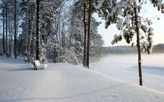 Фото бесплатно сугробы, скамейка, замерзшее озеро, деревья, снег, зима