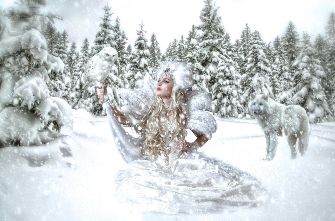 Фото бесплатно зима, девушка, снежная королева, волк, фантазия, фантастика