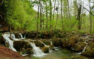 Бесплатные фото горы,лес,деревья,камни,река,водопад