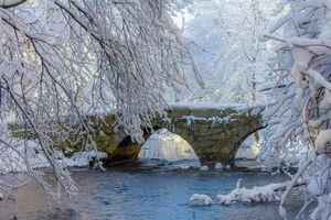 Бесплатные фото зима, река, мост, деревья, ветки, природа, пейзаж