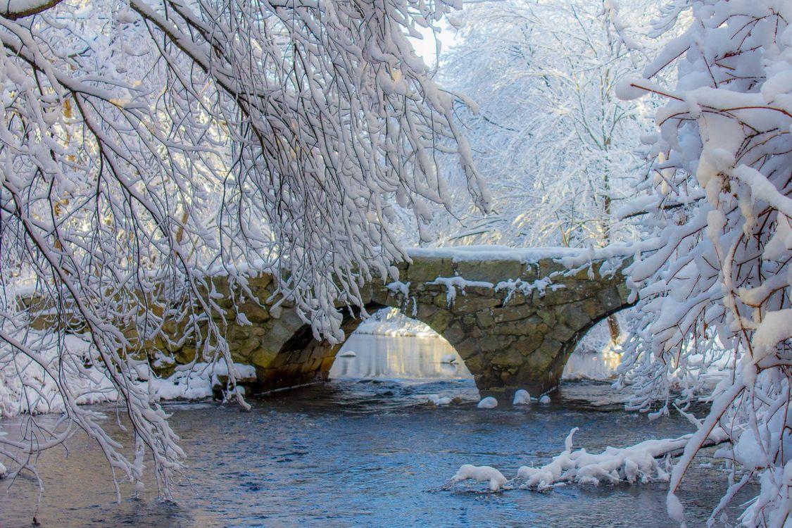 Фото зима река мост - бесплатные картинки на Fonwall