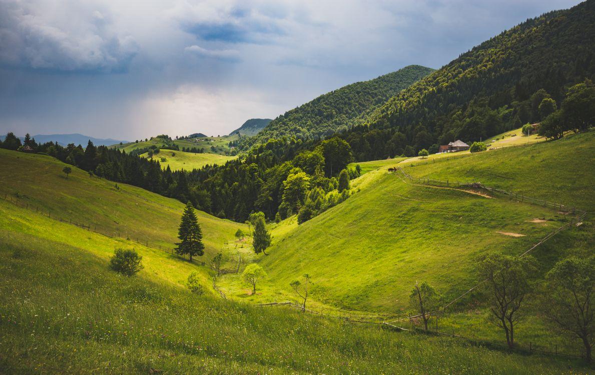 Фото бесплатно пейзаж, природа, Брашов - на рабочий стол