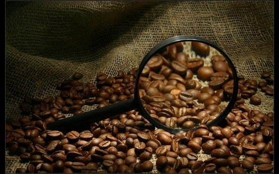 Photo free coffee, magnifier, grain