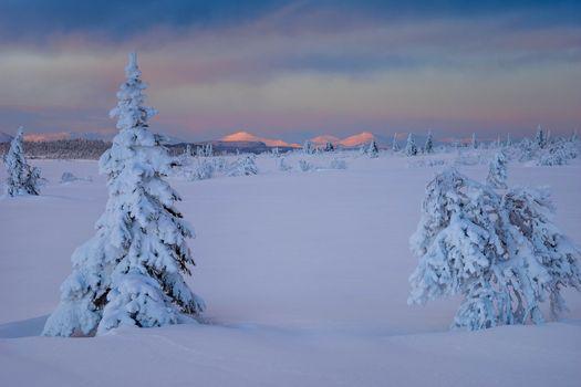 Фото бесплатно Вестерботтен, Швеция, Лапландия
