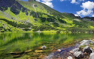 Бесплатные фото озеро,прозрачное,камни,дно,горы,трава,небо