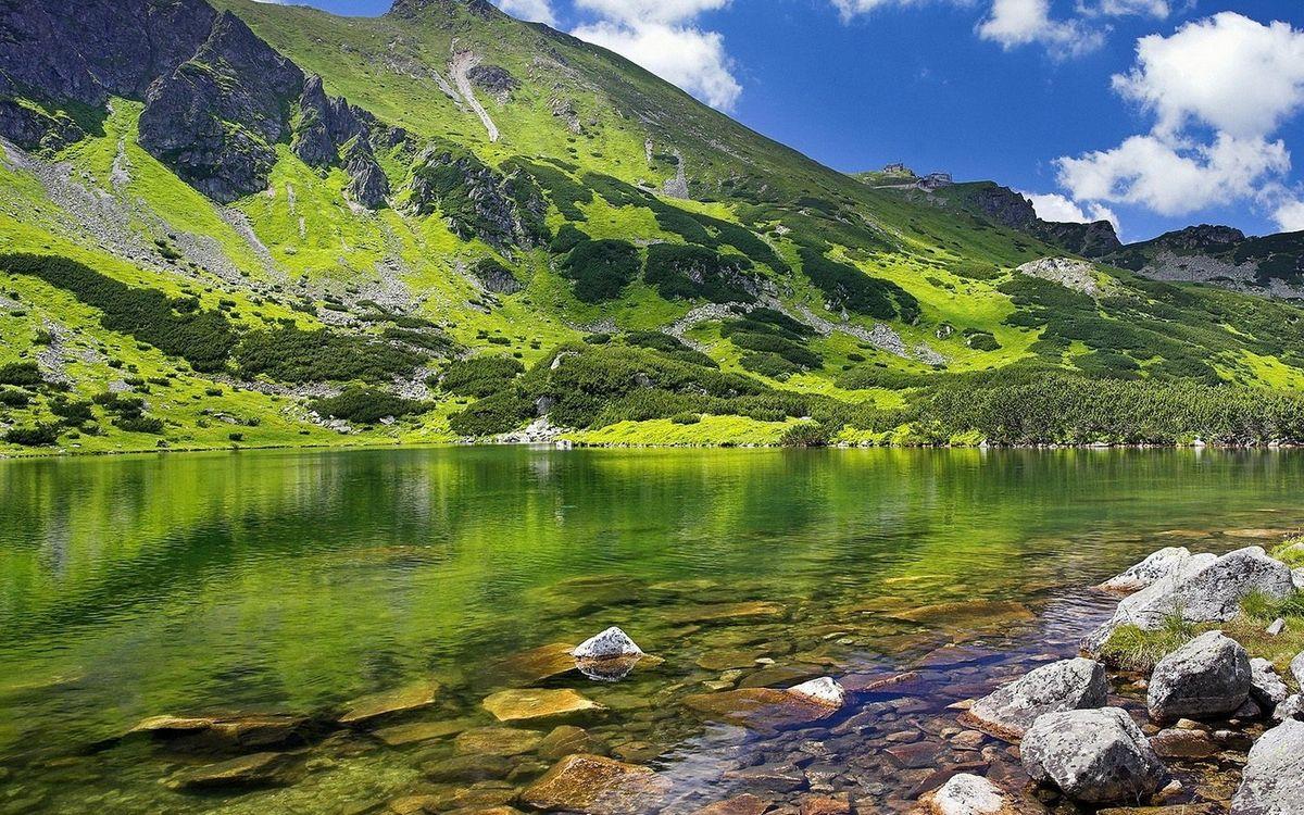 Фото бесплатно озеро, прозрачное, камни - на рабочий стол