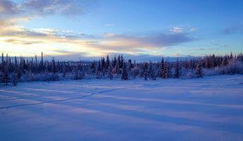 Фото бесплатно Аляска, зима, закат