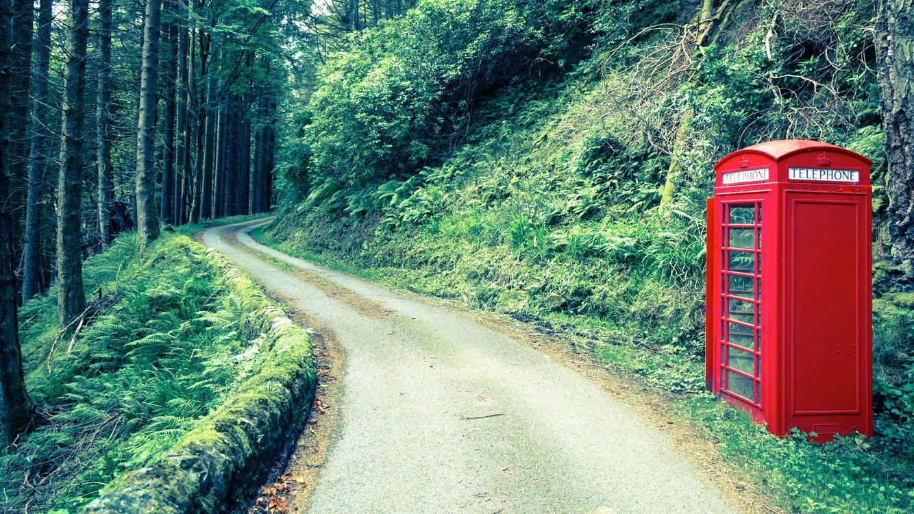 Фото бесплатно загородная дорога, телефонная будка, деревья, лес, природа