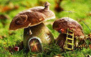 Фото бесплатно грибы, домики, двери, окна, поляна, лестница, поделка