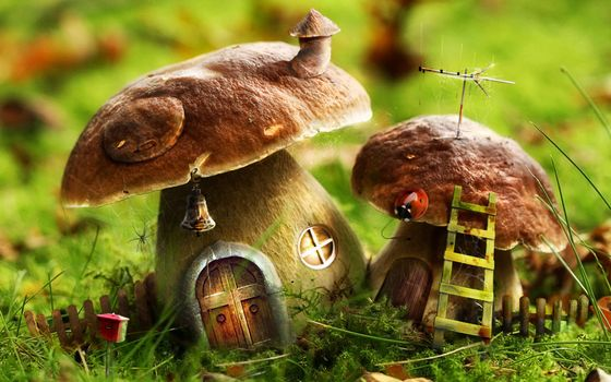Бесплатные фото грибы,домики,двери,окна,поляна,лестница,поделка