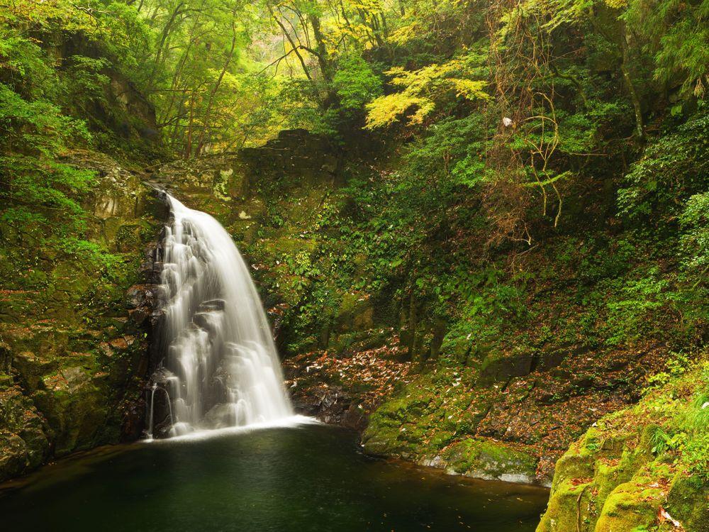 Фото бесплатно осень, лес, деревья, скалы, водопад, природа, природа - скачать на рабочий стол