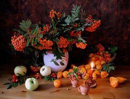 Бесплатные фото рябина,яблоки,свеча,натюрморт
