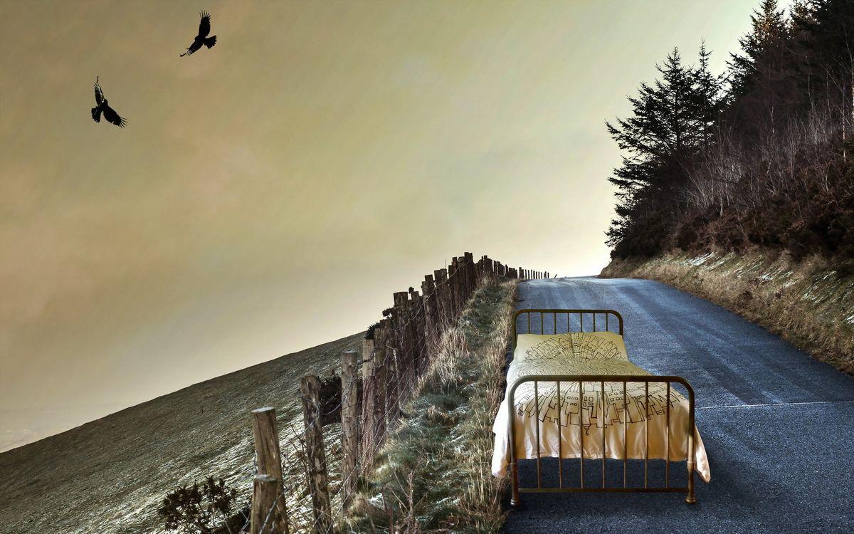 Free photo road, bed, columns - to desktop