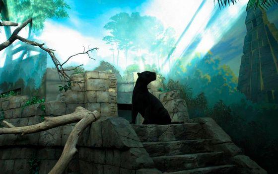 Photo free Mowgli, Panther, Bagheera